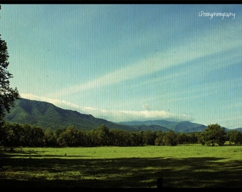 Cades Cove Morning Photographic Print