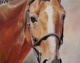 fine art horse print from pastel painting of a performance horse chestnut thoroughbred horse giclle print equine home decor