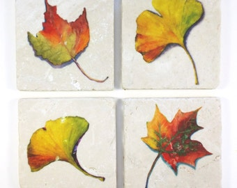 Ginkgo and Maple leaf 4 Absorbent Tumbled Stone Coasters Original Watercolor Fall Leaves