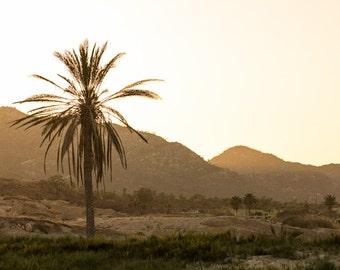 Cabo San Lucas, Mexico - Sunset  - Photography Print