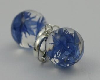 Centaurea - flower earrings with sterling silver