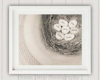 Mothers Day Gift, Egg in Nest Print, Grandmother Gift, Personalized Gift for Her, Personalized Grandmother Gift, Family Nest Print, Mom Gift