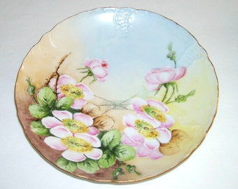Antique Rosenthal Bavaria Hand Painted Flowers Spider Web Plate