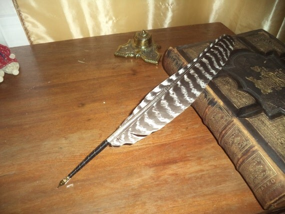 Feather Quill Pen Calligraphy Quill Turkey By