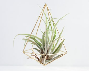 The Teardrop | Modern Minimalist Geometric Hanging Ornament, Mobile, and Air Plant Holder