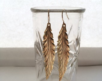 Gold willow leaves