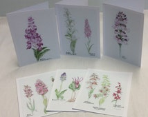 Set of 6 watercolor orchid note cards with envelopes, orchid floral art cards, Orchid botanical greeting card, set of orchid prints on cards