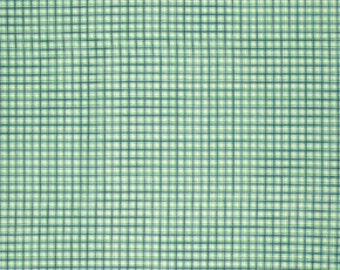 SALE Franklin - Windowpane Panel Glen - Denyse Schmidt - Free Spirit / Westminster (PWDS086.GLENX)