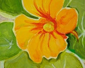 "Golden Nasturtium Original Botanical Art Acrylic on Board 4""x4"""