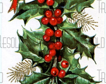 Holly Pine Bough Christmas Card #372 Digital Download
