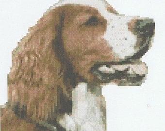 CROSS STITCH KIT- Welsh Springer Spaniel 18cm x 17cm