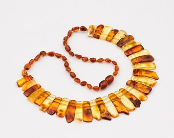 Natural Baltic Amber Adult Choker Necklace - Mix Color