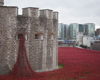 Ceramic Poppies, London Photography, Red Poppies, Remembrance Day Photograph, Tower of London, Poppies,Travel Photography,Wall Art,