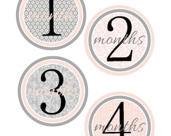 Milestone Stickers, Baby Month Stickers, Pink and Gray, , Monthly Baby Sticker, Baby Shower Gifts, Baby Month Sticker Girl, G19