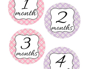 Baby Month Stickers, Pink and Purple, Monthly Stickers, Monthly Baby Sticker, Baby Shower Gifts, Baby Month Sticker Girl, G66