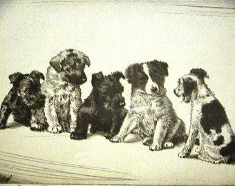 Diana Thorne Vintage Dog Print  - 1936 - PUPPY COMMITTEE  - Scottish Terriers  - Fine Quality Professionally Matted Art Ready to Frame Art