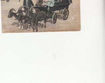 1908 Lyon France Elegant Goat Cart Little Girls And Driver In Fancy Clothes Antique Postcard