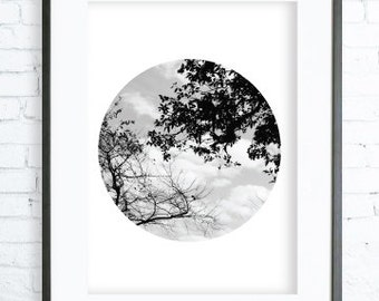 Trees Art, Black and White View Poster, instant Download Printable, Digital print, Print, Photography, Gallery Wall