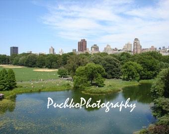 Central Park Pond New York, NY