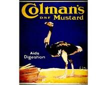 Colmans English Mustard Vintage Advertising Enamel Metal TIN SIGN Wall Plaque
