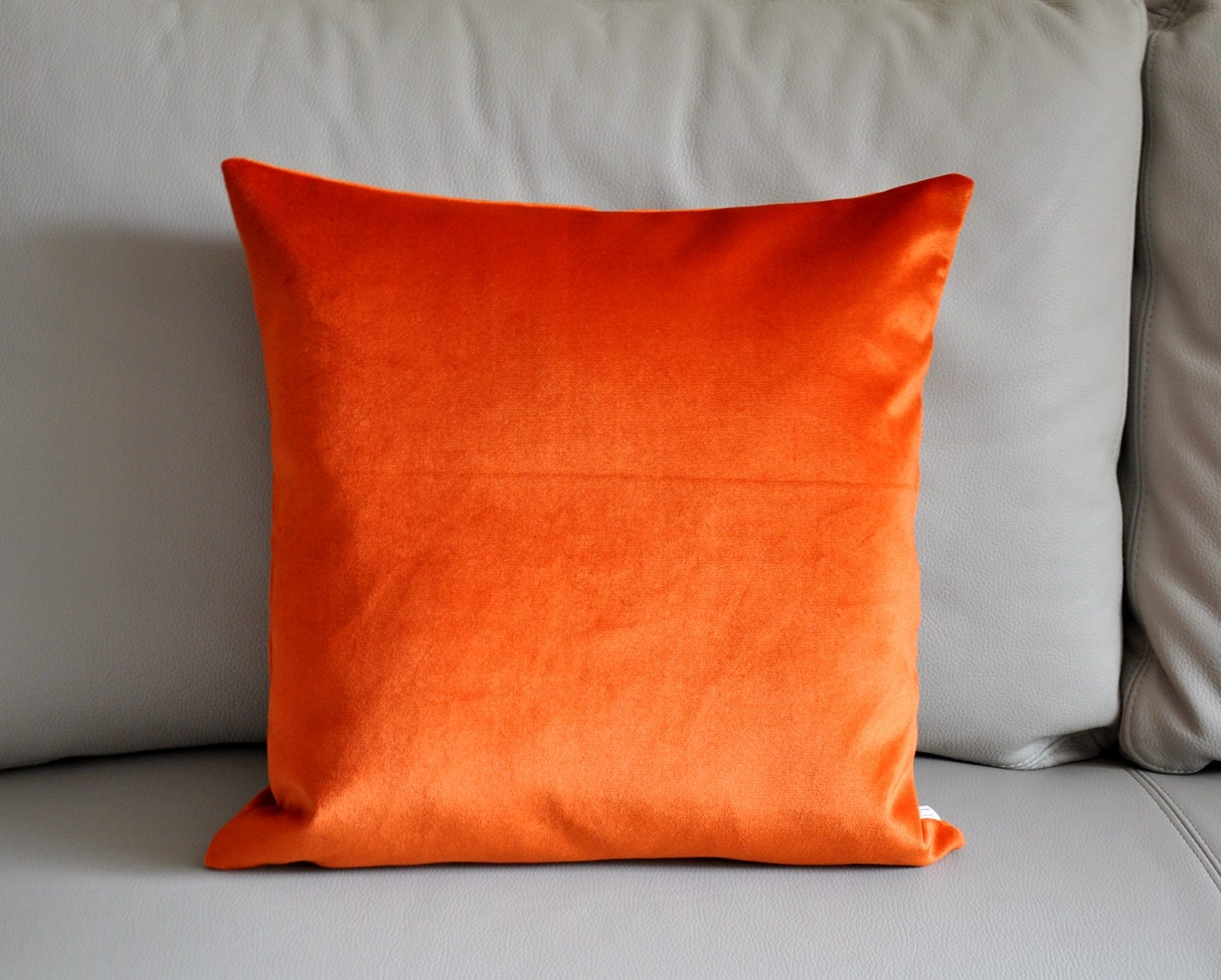 Decorative Accent Pillow ! on Pinterest Pillow Covers, Throw Pillows and Velvet