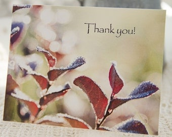 Thank you, morning dew, blank inside note card   5 x 4.25