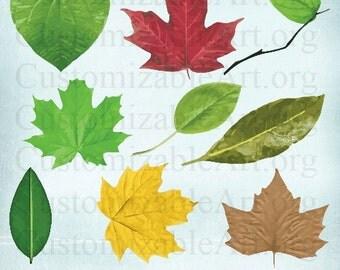 Digital Clipart, Leaf Clipart, Green Leaves Clip Art, Digital Scrapbook Clipart Images Supplies, Digital Embellishments, Textured Realistic