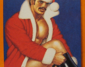 Tom of Finland by Tom of Finland and Touko