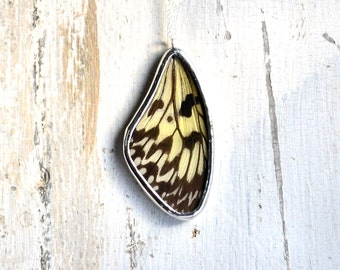 Real Butterfly Wing Necklace Idea leuconoe Rice Paper Kite Butterfly