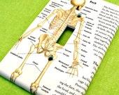 Skeleton Back View Oversized Jumbo Light Switch Plate Cover Gift for MassageTherapist Chiropractor Doctor Medical Student