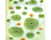 Lily Pond Print, giclee print, water lilies, flowers, botanicals, watercolor