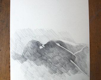 original pencil drawing - Ghost
