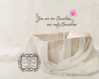 You Are Our Sunshine Wall Decal