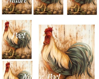 Waterslide Rooster Decal Sheet 8 x 10 inches Home Decor, Kitchen Decor, Furniture, Walls Transfer Images 1 :Large and 5 Small on One Sheet