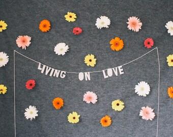 paper decor banner, LIVING ON LOVE - handmade, wall hanging, bedroom decor, house decor, interior decor, home decor, word banner, banner