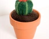 Needle Felted Barrel Cactus in Tiny Terra Cotta Pot