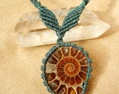 Ammonite Necklace in Blue Green Micro Macrame Knotting