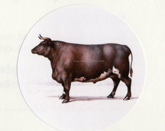 Cow Stickers | Bull Envelope Seal | Set of Eight 1.5 inch Seals From Vintage Image