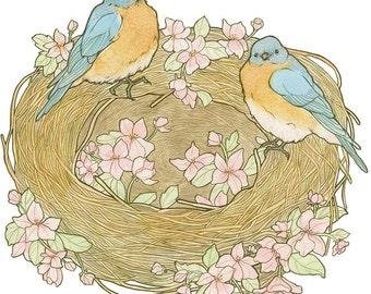 Bluebird Nest - Archival Print