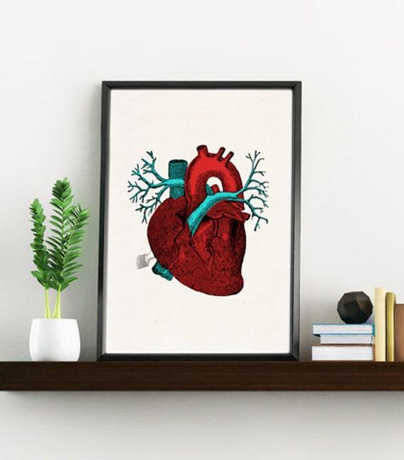 Christmas Sale Art print Blue and red Human Heart -Science prints A4 wall art- Anatomy prints wall Doctors Gift, Love gift  SKA057WA4