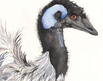 Emu Watercolor Painting Original Watercolor painting