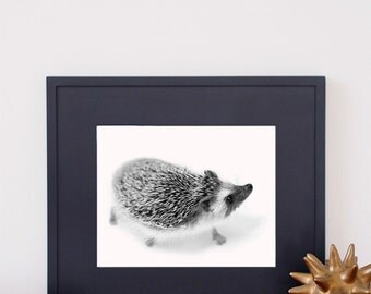 Hedgehog Art Print Hedgie Poster Home Decor Wall Art Wildlife Artwork Nature Decor Giclee Woodland Nursery Decor Black & White Photography