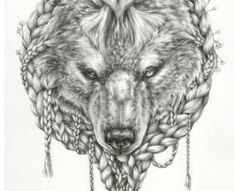Braided Bear - 11x14 animal illustration art print