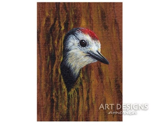 Woodpecker in Tree, ACEO Archival Art Print, Bird Acrylic Painting Art Print, Bird Art, SF, Small Format Art, Artist Trading Card, ADA-P381