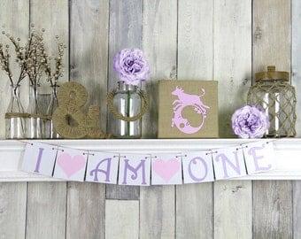 I am One Banner, Birthday Banner, First birthday Banner, First Birthday, I am one, 1st birthday, first birthday girl, girl first birthday