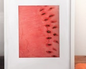 Watermelon Art Study / Kitchen Wall Decor Print / Archival / Food / Painting / Drawing / Illustration / Red / Close up / Cut / Bright / Bold