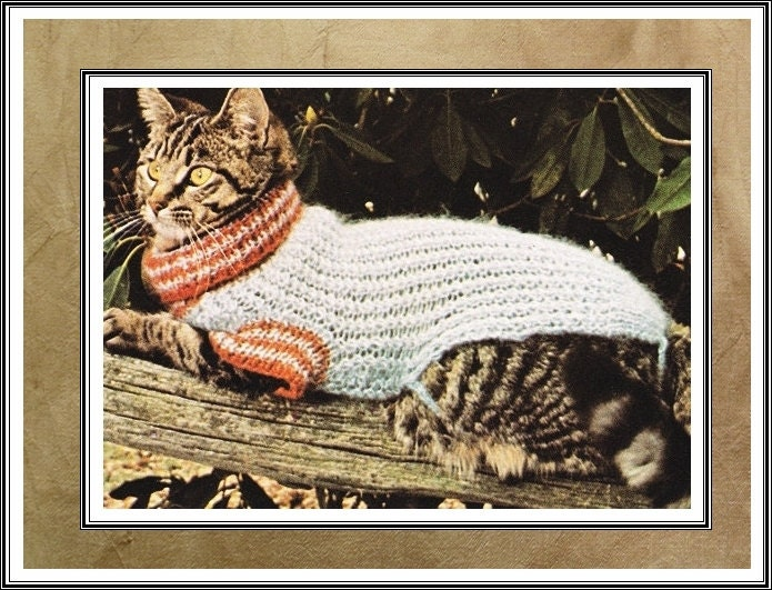 Unavailable listing on etsy - Knitted cat sweater pattern ...
