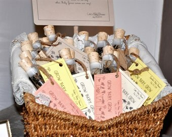 Baby Girl Baby Shower Favors, Corked Wildflower Seed Tubes