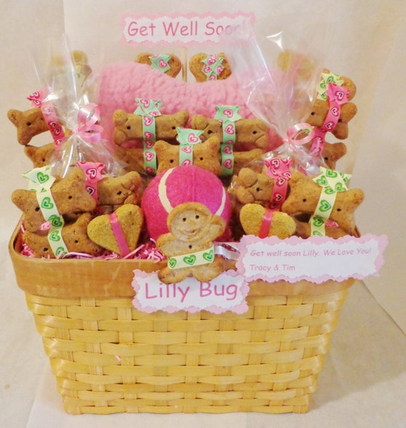 Dog Birthday Gift Baskets : Dog biscuit treat gift basket with squeak by