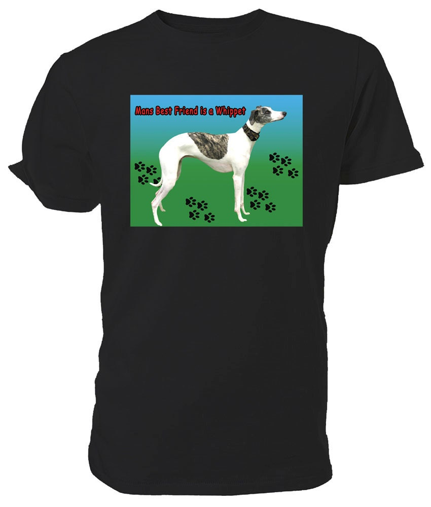 Whippet Dog T shirt choice of sizes and colours